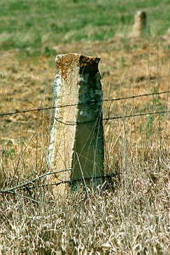 Quarried Limestone fence post image